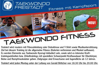 Taekwondo Fitness Training