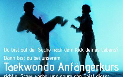 Taekwondo Anfängerkurs